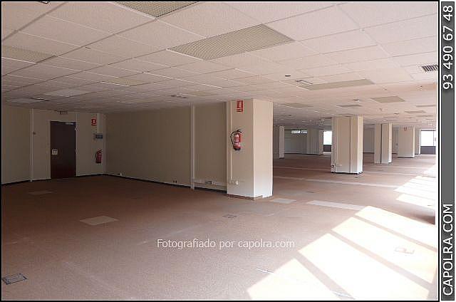Imagen sin descripción - Oficina en alquiler en Sant Joan Despí - 220380450