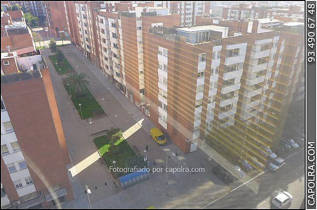 Imagen sin descripción - Oficina en alquiler en Sant Joan Despí - 265993049