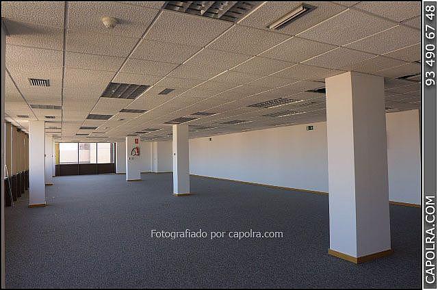 Imagen sin descripción - Oficina en alquiler en Sant Joan Despí - 318611830