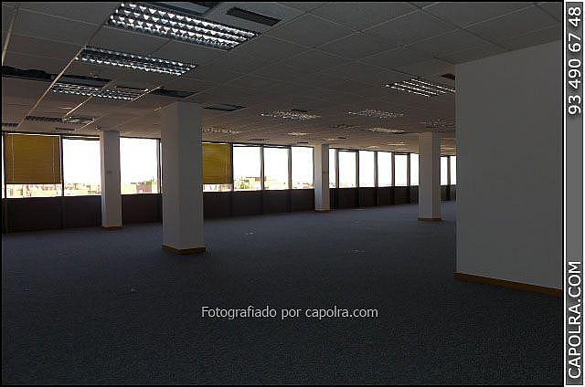 Imagen sin descripción - Oficina en alquiler en Sant Joan Despí - 318611833