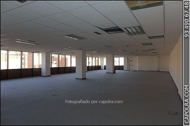 Imagen sin descripción - Oficina en alquiler en Sant Joan Despí - 318611851
