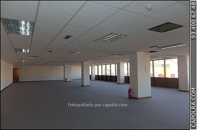 Imagen sin descripción - Oficina en alquiler en Sant Joan Despí - 318611857