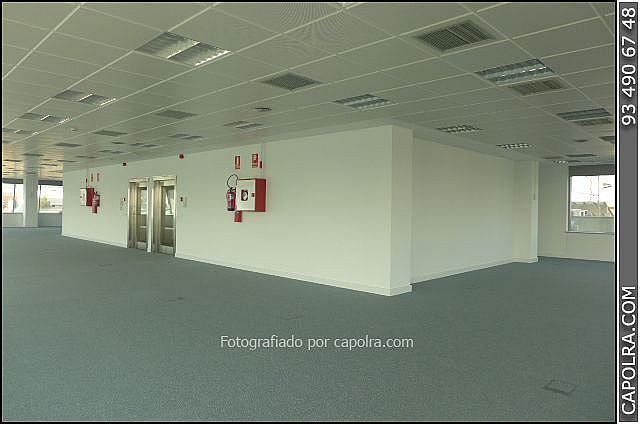 Imagen sin descripción - Oficina en alquiler en El Poble Sec-Montjuïc en Barcelona - 220369977