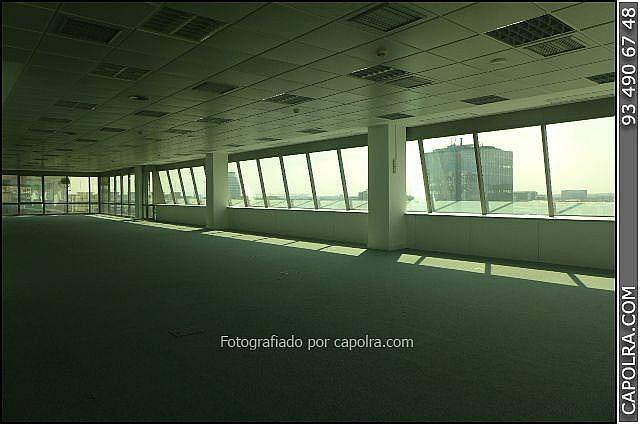 Imagen sin descripción - Oficina en alquiler en El Poble Sec-Montjuïc en Barcelona - 220369980
