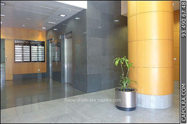 Imagen sin descripción - Oficina en alquiler en El Poble Sec-Montjuïc en Barcelona - 220369992