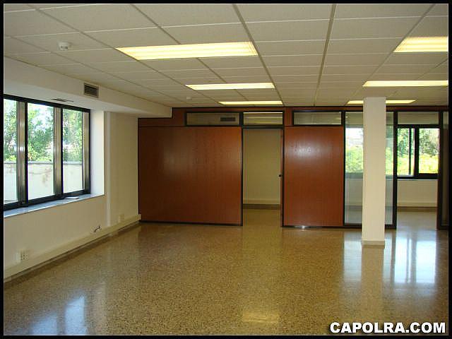 Imagen sin descripción - Oficina en alquiler en Esplugues de Llobregat - 220379613