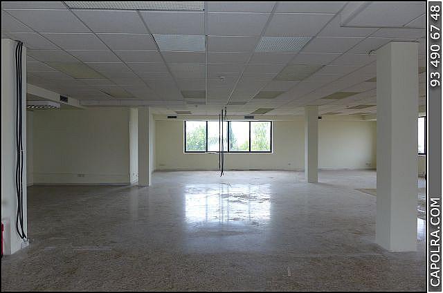 Imagen sin descripción - Oficina en alquiler en Esplugues de Llobregat - 220379676