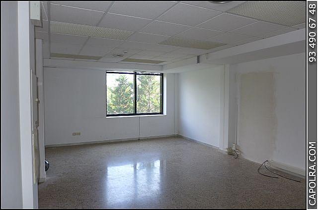 Imagen sin descripción - Oficina en alquiler en Esplugues de Llobregat - 220378863