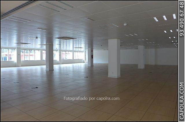 Imagen sin descripción - Oficina en alquiler en Eixample en Barcelona - 244219741