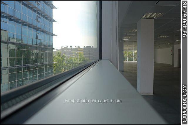 Imagen sin descripción - Oficina en alquiler en Sant martí en Barcelona - 287446742