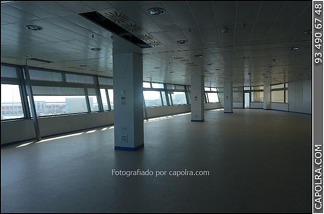 Imagen sin descripción - Oficina en alquiler en El Raval en Barcelona - 272335833