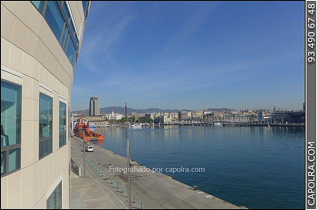 Imagen sin descripción - Oficina en alquiler en El Raval en Barcelona - 272335845