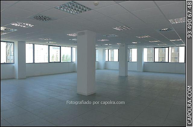 Imagen sin descripción - Oficina en alquiler en Sant Just Desvern - 220124388