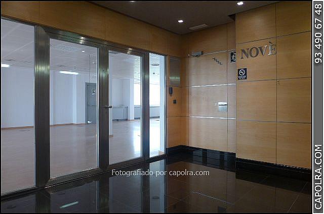 Imagen sin descripción - Oficina en alquiler en Les corts en Barcelona - 220113507