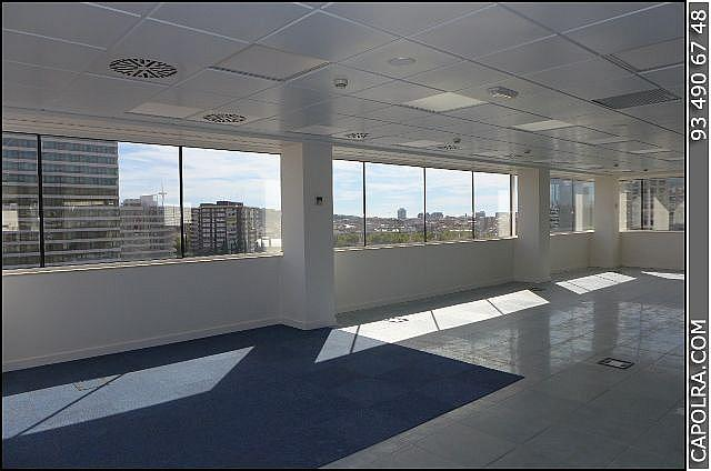 Imagen sin descripción - Oficina en alquiler en Sants-montjuïc en Barcelona - 220114293