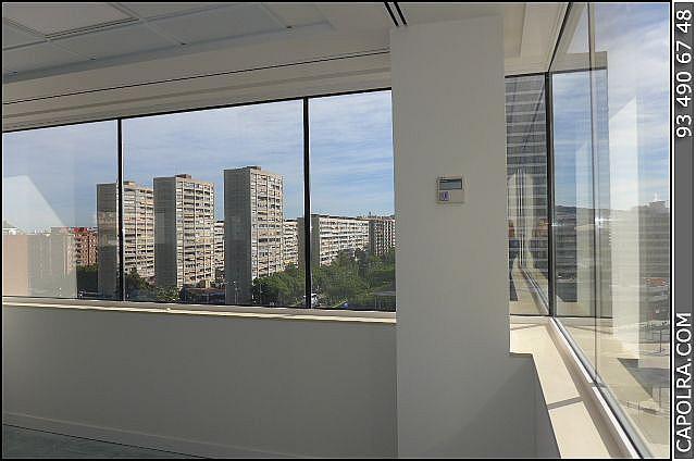 Imagen sin descripción - Oficina en alquiler en Sants-montjuïc en Barcelona - 220114299