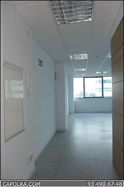 Imagen sin descripción - Oficina en alquiler en Sant Just Desvern - 220124310