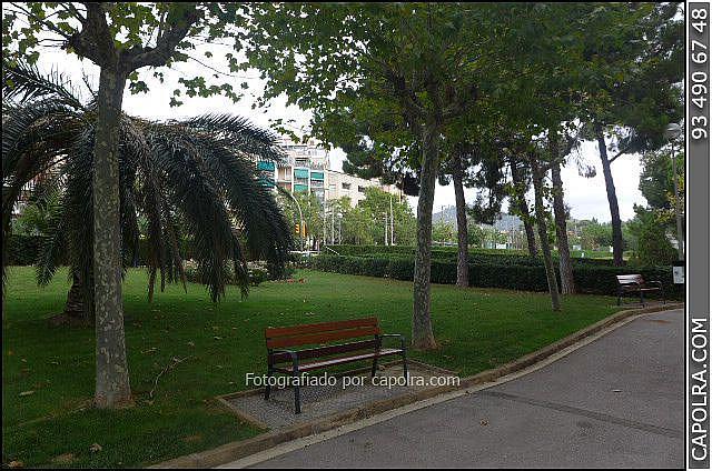 Imagen sin descripción - Oficina en alquiler en Esplugues de Llobregat - 220122006