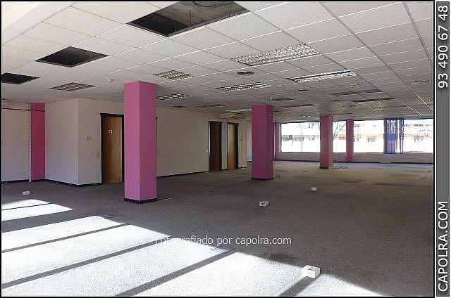 Imagen sin descripción - Oficina en alquiler en Les corts en Barcelona - 245386349