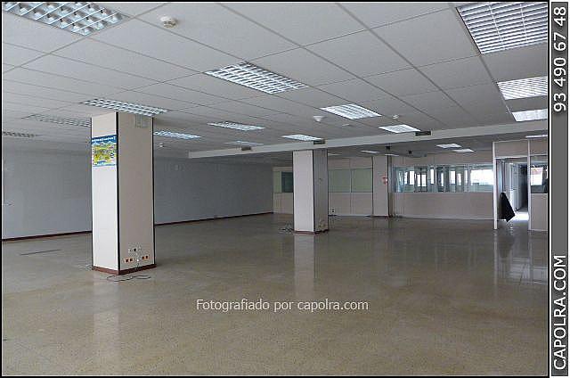 Imagen sin descripción - Oficina en alquiler en Vila de Gràcia en Barcelona - 220117278