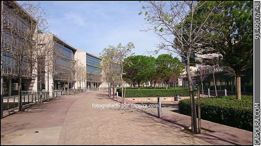 Imagen sin descripción - Oficina en alquiler en Sant Cugat del Vallès - 221400538
