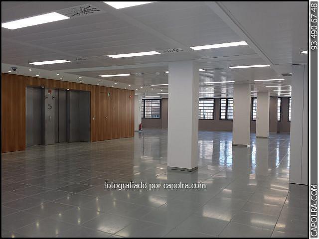 Imagen sin descripción - Oficina en alquiler en Eixample en Barcelona - 216341217