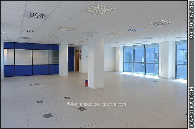 Imagen sin descripción - Oficina en alquiler en Sant Just Desvern - 220124184