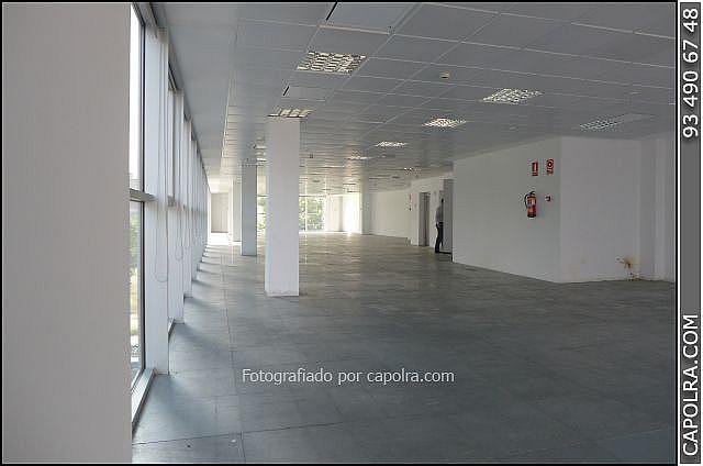 Imagen sin descripción - Oficina en alquiler en Sant martí en Barcelona - 287446814
