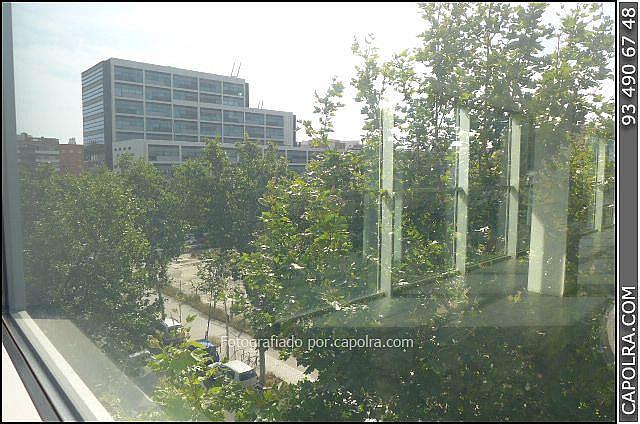 Imagen sin descripción - Oficina en alquiler en Sant martí en Barcelona - 287446817