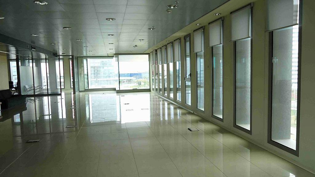 Imagen sin descripción - Oficina en alquiler en Hospitalet de Llobregat, L´ - 277300219