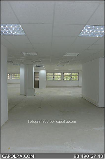 Imagen sin descripción - Oficina en alquiler en Esplugues de Llobregat - 216340527