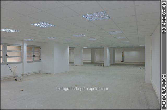 Imagen sin descripción - Oficina en alquiler en Esplugues de Llobregat - 216340536