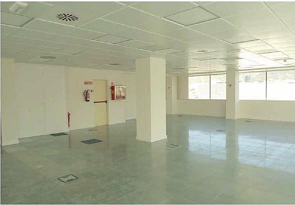 Imagen sin descripción - Oficina en alquiler en Sants-montjuïc en Barcelona - 216340566