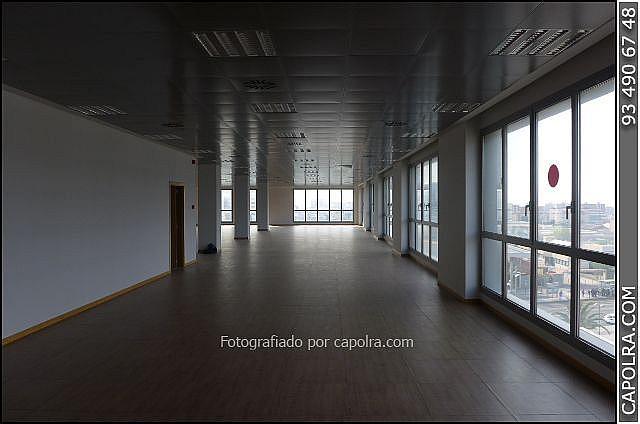Imagen sin descripción - Oficina en alquiler en Sant Joan Despí - 226119660