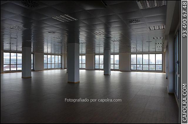 Imagen sin descripción - Oficina en alquiler en Sant Joan Despí - 226119663