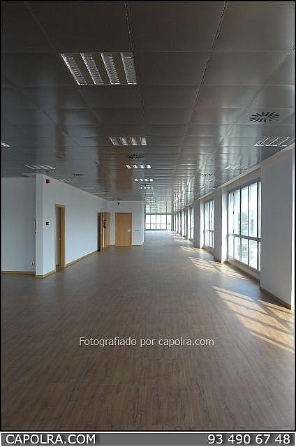 Imagen sin descripción - Oficina en alquiler en Sant Joan Despí - 226119684