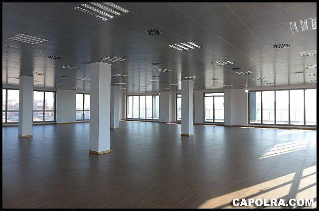 Imagen sin descripción - Oficina en alquiler en Sant Joan Despí - 226119726