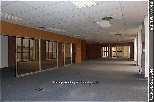 Imagen sin descripción - Oficina en alquiler en Sant Just Desvern - 246510305