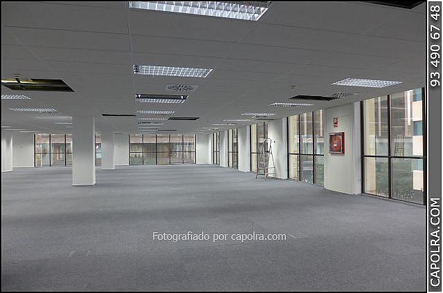 Imagen sin descripción - Oficina en alquiler en Sant Just Desvern - 248040516