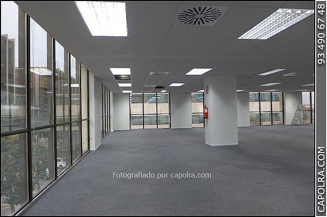 Imagen sin descripción - Oficina en alquiler en Sant Just Desvern - 248040525