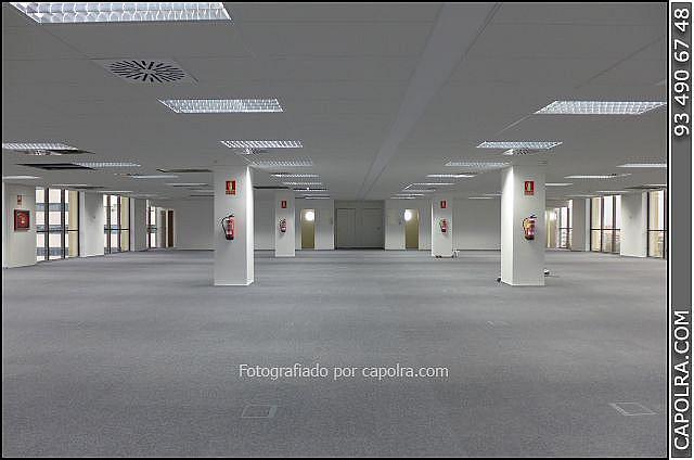 Imagen sin descripción - Oficina en alquiler en Barcelona - 248040474