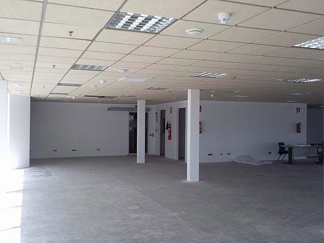 Detalles - Oficina en alquiler en calle Isla de la Cartuja, Triana en Sevilla - 124127184
