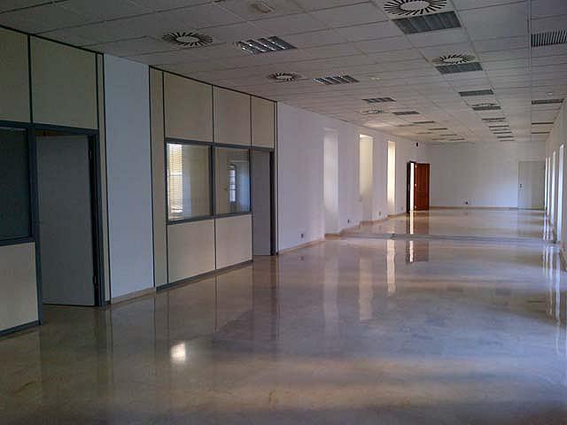 Detalles - Oficina en alquiler en calle Sevilla, Casco Antiguo en Sevilla - 124175062