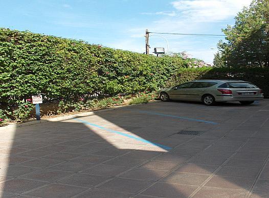 Parking - Edificio en alquiler en calle La Palmera, La Palmera en Sevilla - 144637336