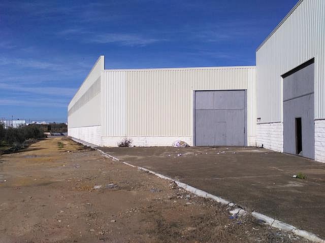 Nave industrial en alquiler en carretera Bollullos, Centro Urbano en Bollullos de la Mitación - 177801084
