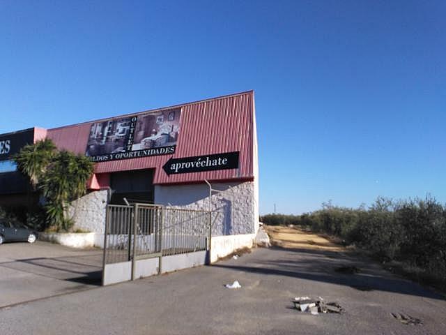 Nave industrial en alquiler en carretera Bollullos, Centro Urbano en Bollullos de la Mitación - 177801089