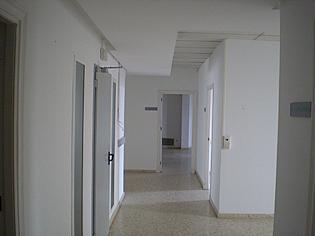Detalles - Oficina en alquiler en calle Centro, Casco Antiguo en Sevilla - 196354744