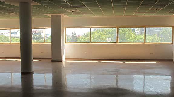 Oficina en alquiler en calle Sevilla Este, Av. Ciencias-Emilio Lemos en Sevilla - 213466874