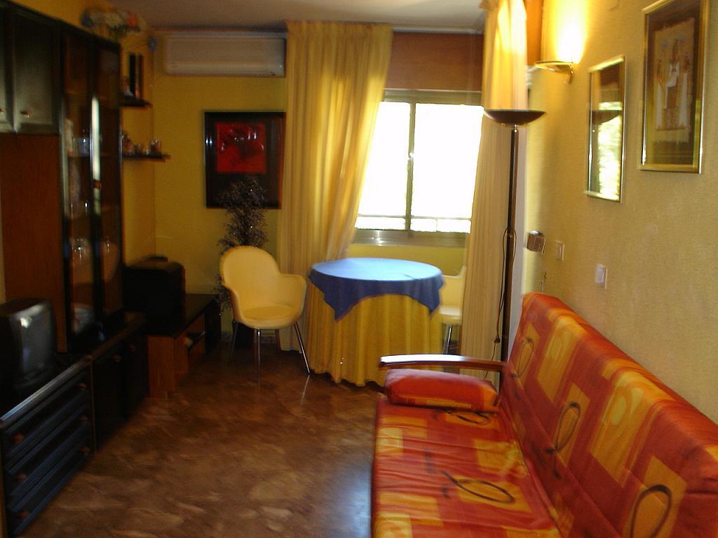 Piso en alquiler en calle Jativa, El Pla del Remei en Valencia - 219113612
