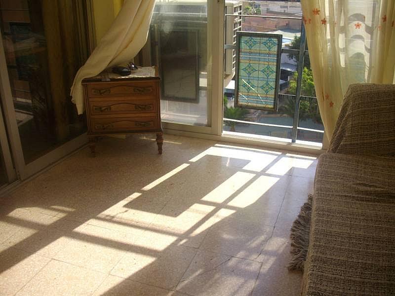 Foto - Apartamento en venta en calle Venezuela, Poniente en Benidorm - 249756869